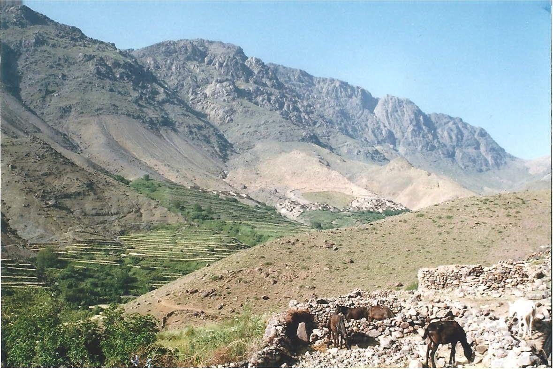 Le campement à Tachedirt