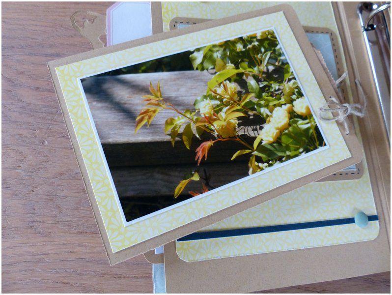 "Mylène : Album ""Jolis moments"""