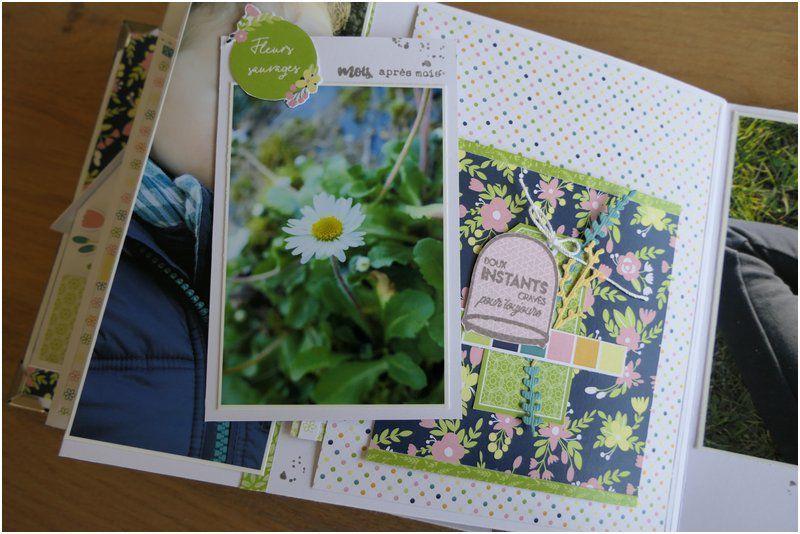Mylène : Album Kit du mois : Mon jardin aux mille couleurs