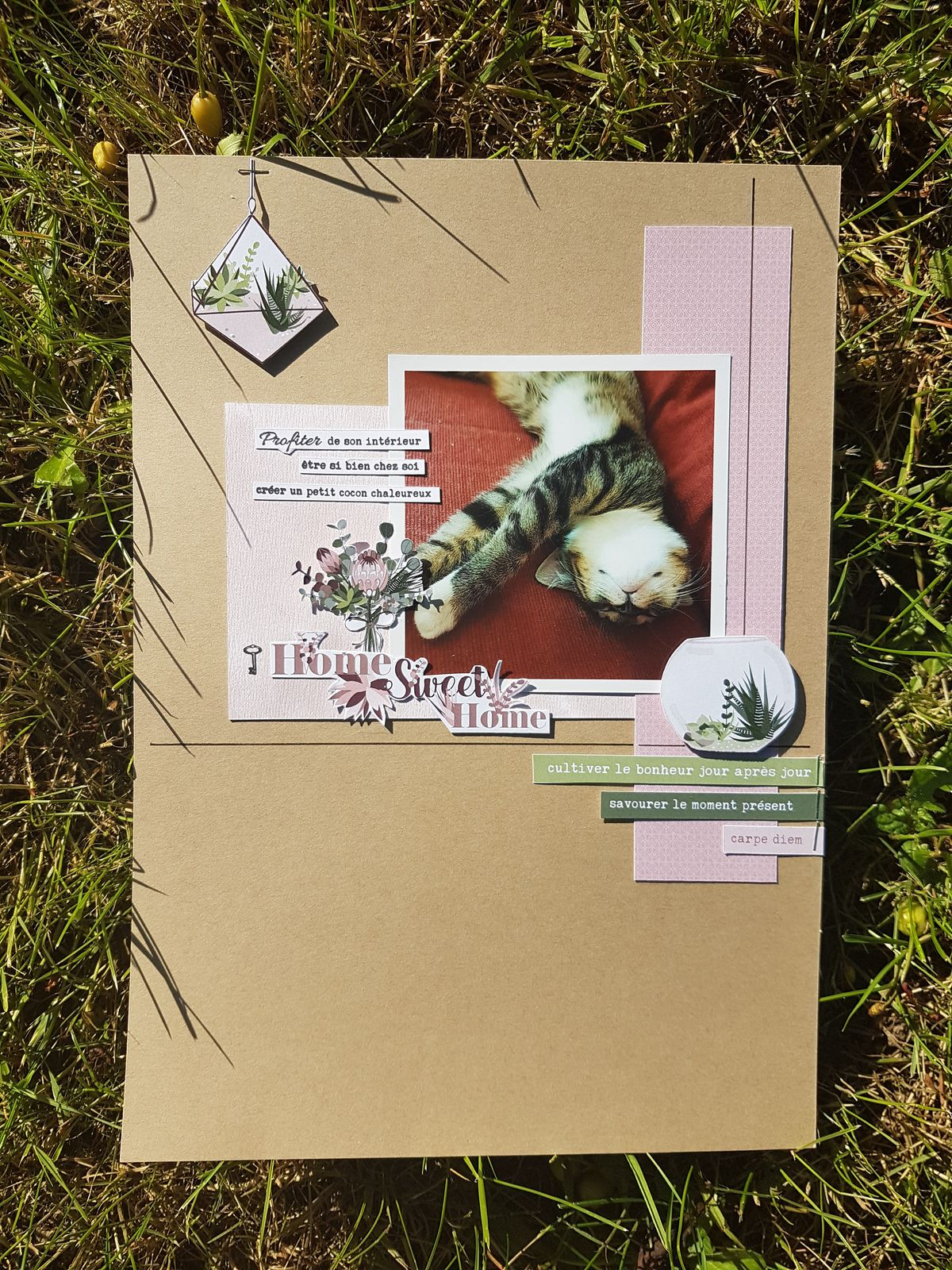 Stephscrap87...2 pages...2 cartes
