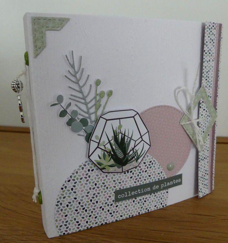 """Val49 : mini """"Collection de plantes"""""""