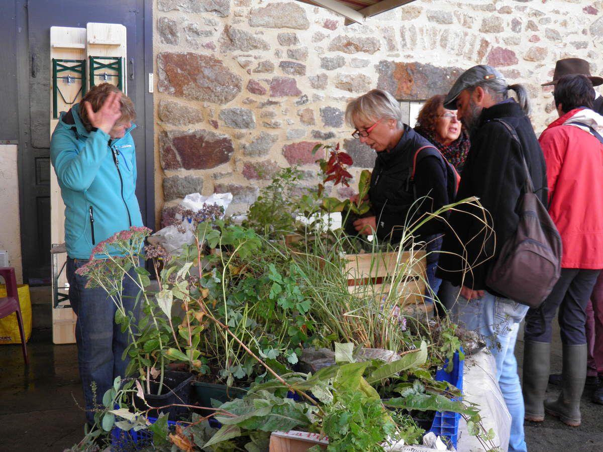 """Fiona et Annick sur le stand """"troc-plantes""""."""