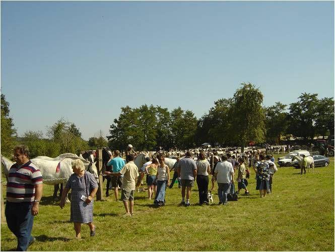 Le comice du 4 septembre 2004 sur les terrains de la Monnerie à Saint-Pierre-des-Nids.