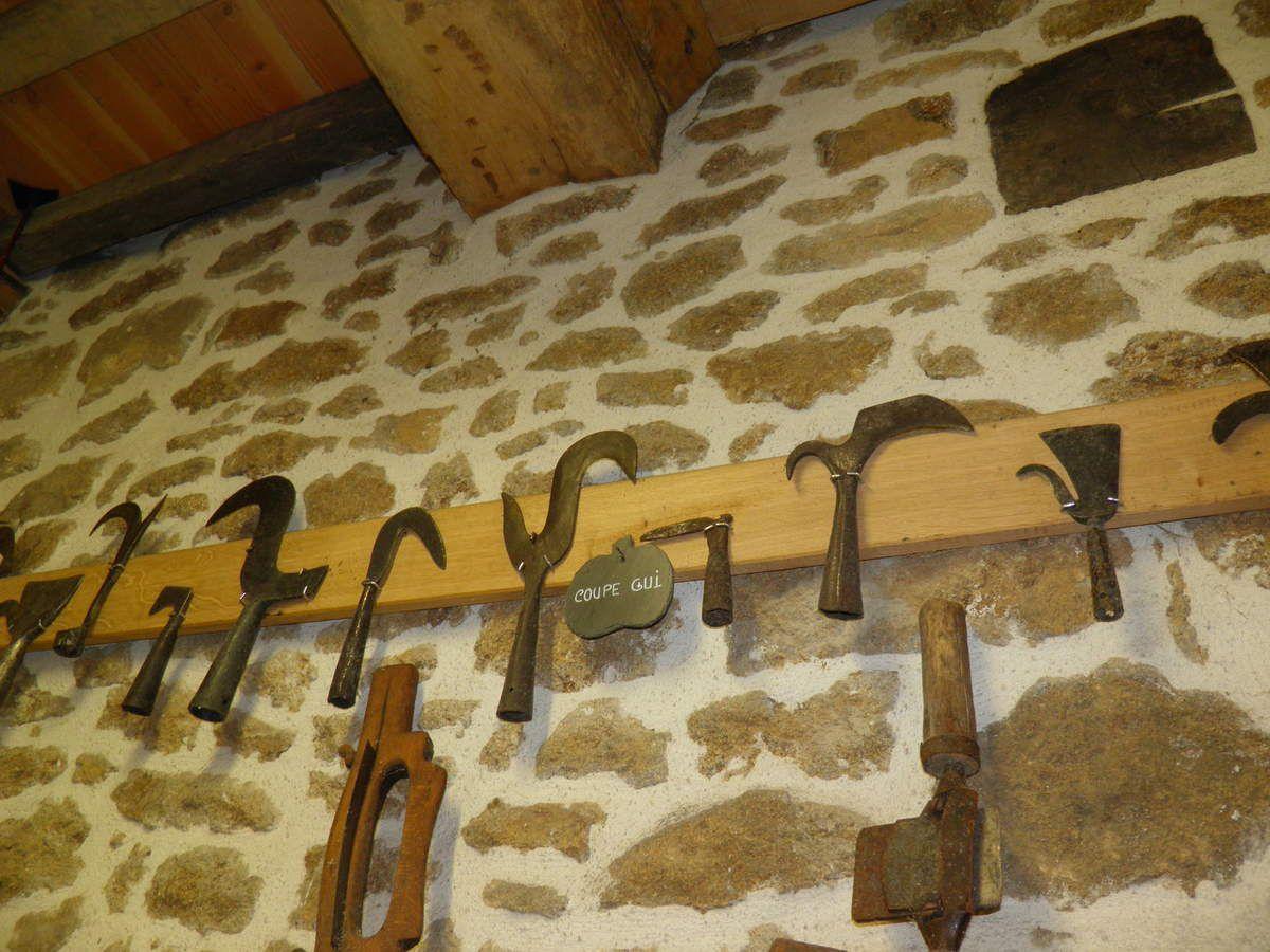 Des coupe-gui. Autrefois les mairies pénalisaient les propriétaires laissant le gui se développer sur leurs pommiers.