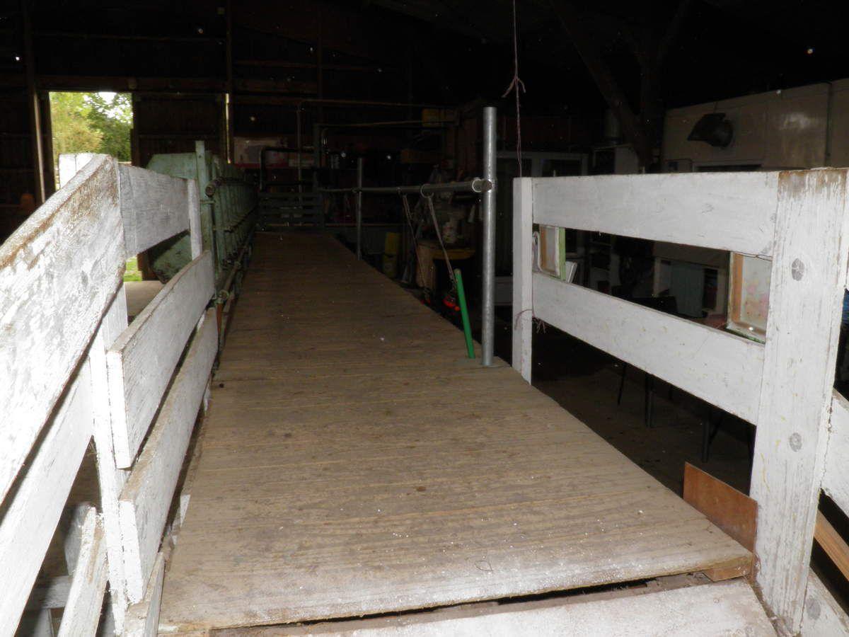 L'espace de traite (vu du côté des chèvres !).