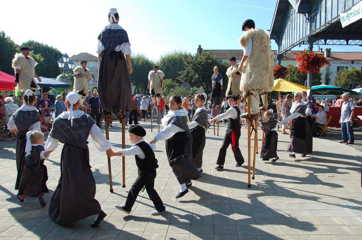 Que le spectacle de danse folklorique commence.