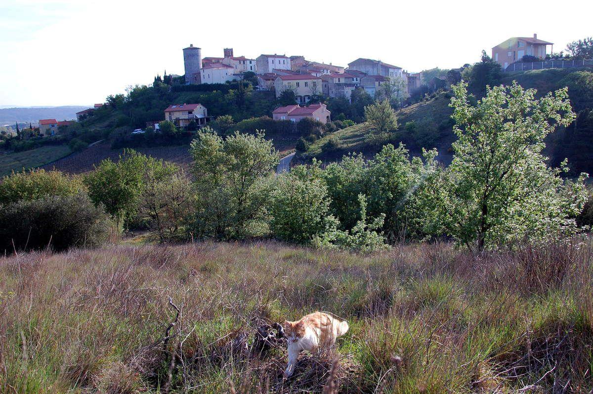 La belle et le village.