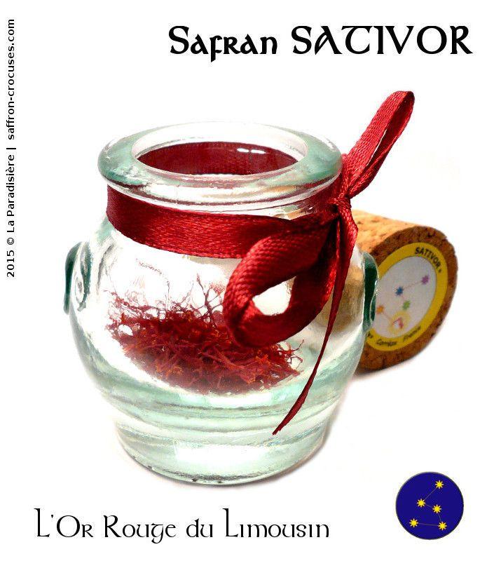 A la découverte du Safran du Limousin Sativor
