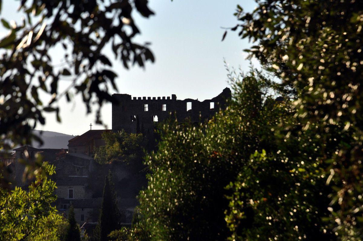 Le château et la verdure.