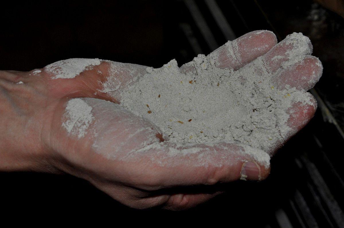 La main du boulanger et la farine.