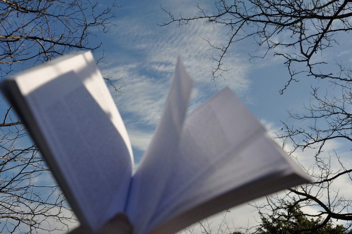 Lire dans la nature c'est être libre de découvrir un monde.
