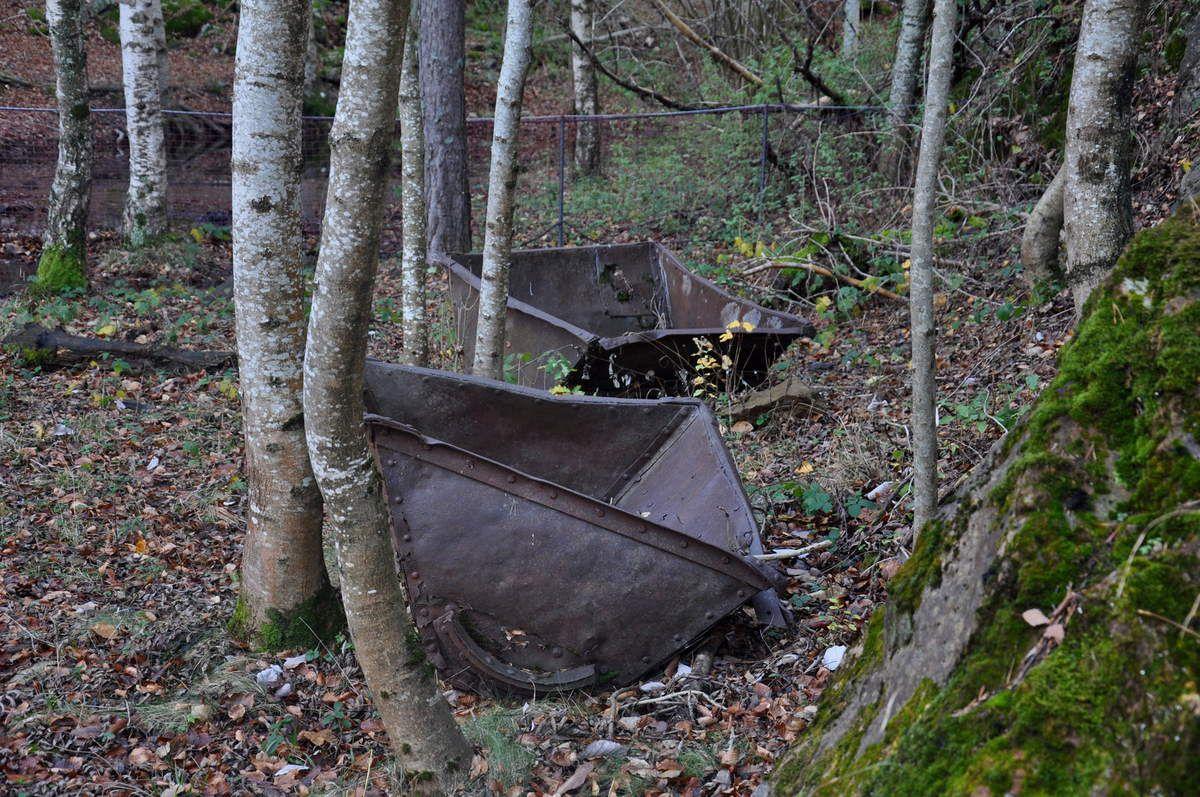 Vestige du fer avec deux wagonnets.