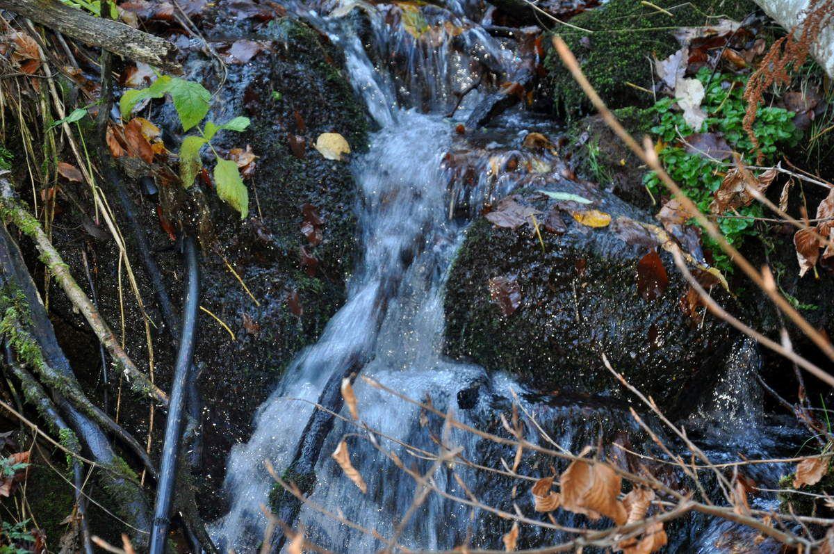 L'eau coule, il n'en manque pas ici, malgré la sècheresse sur les plaines.