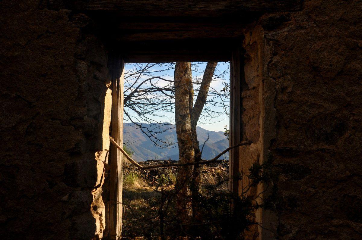 Fenêtre.