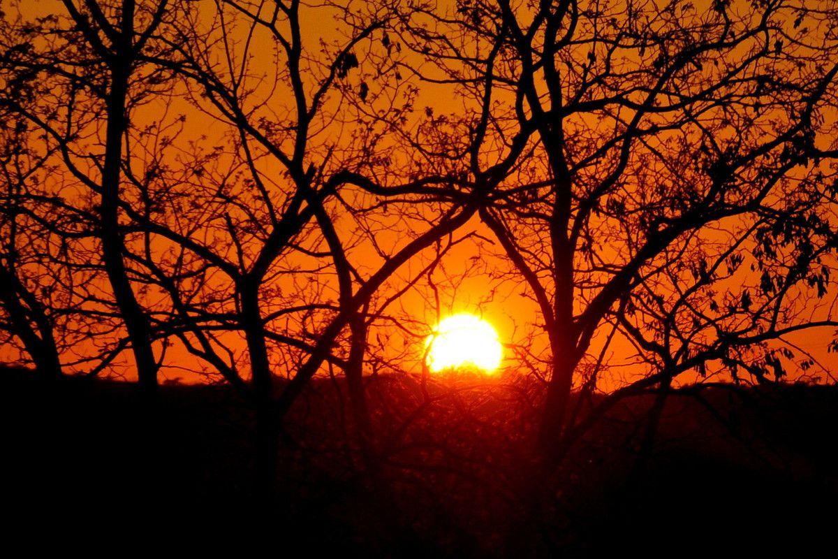 Gros plan comme j'aime avec ce soleil rouge.