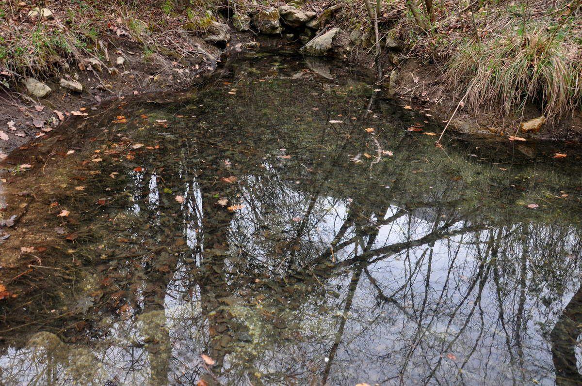 Passage d'une petite rivière.