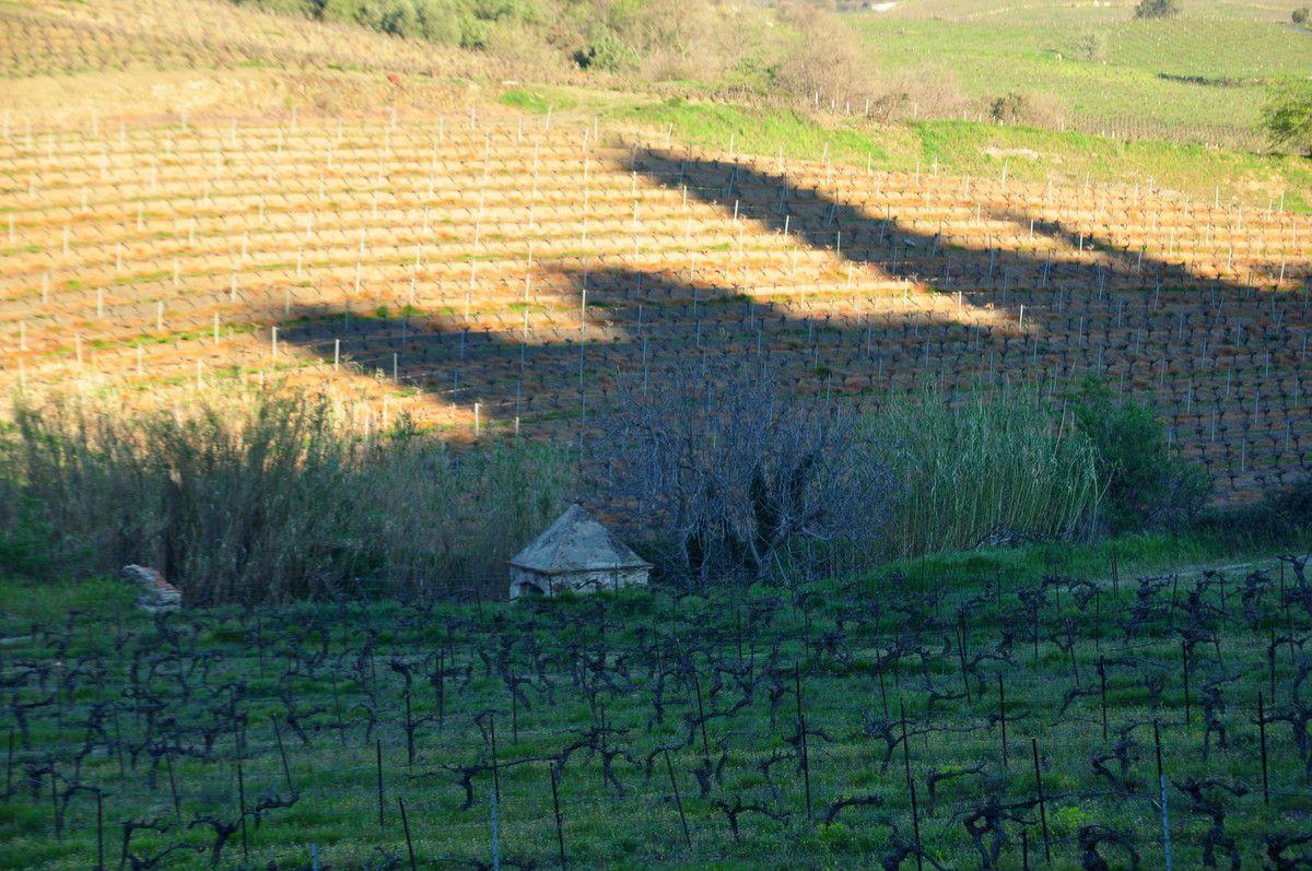 Direction l'ombre de l'église et du château d'eau.