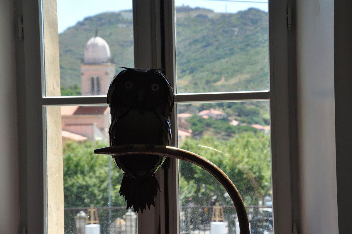 L'hibou à la fenêtre.
