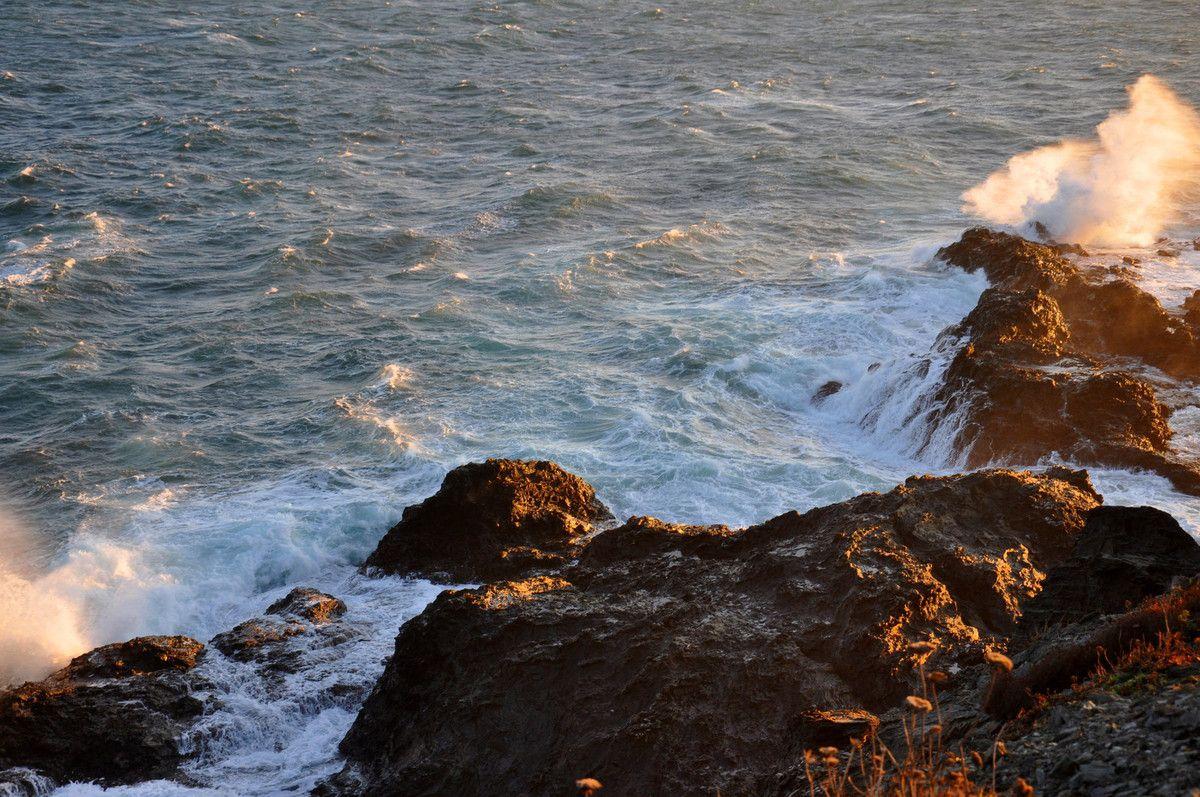 Des vagues et des rochers