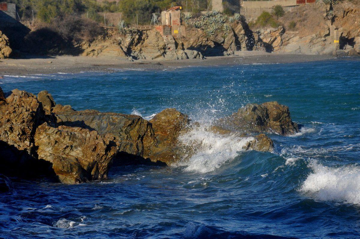 Restons sur les vagues.