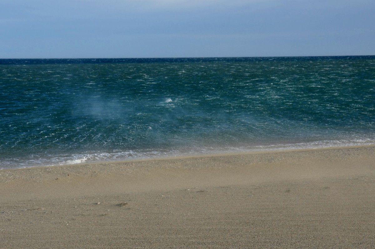 Vent sur la plage.