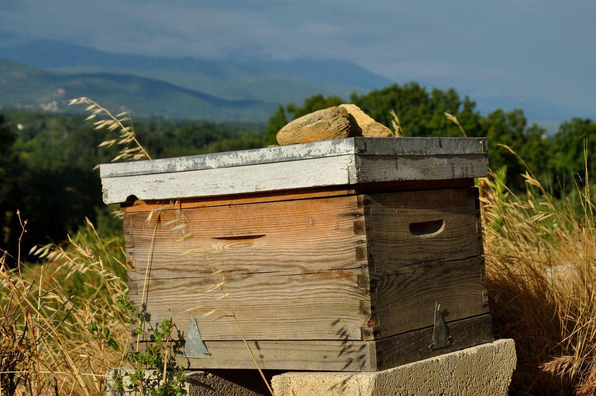 Une ruche , place au côté nature.