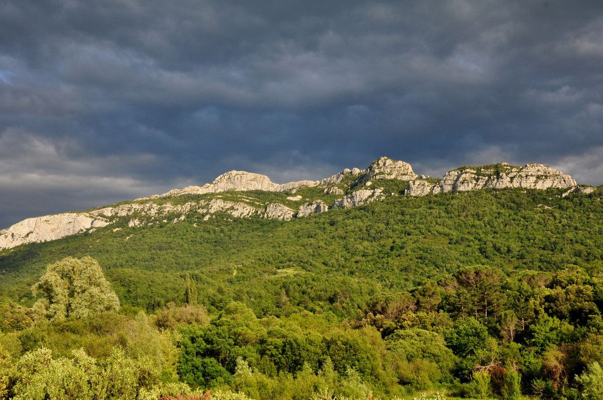 Le Château de Peyrepertuse arrive en visuel.