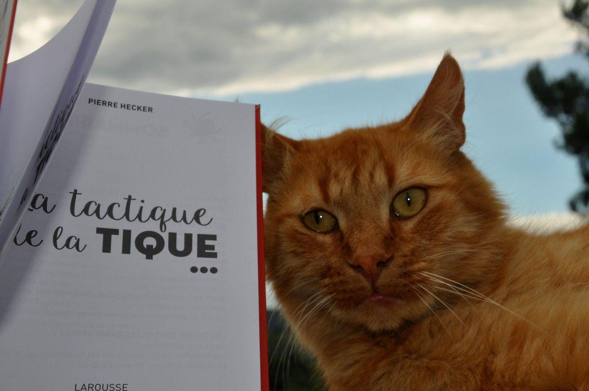 Un livre sérieux, pas sur le rouquin l'écoute très sérieusement par contre.
