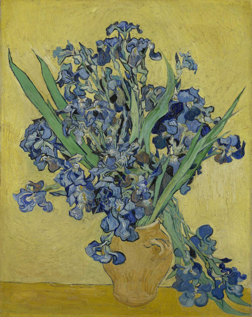 Vincent van Gogh, Irises, May 1890, oil on canvas, Van Gogh Museum, Amsterdam (Vincent van Gogh Foundation).