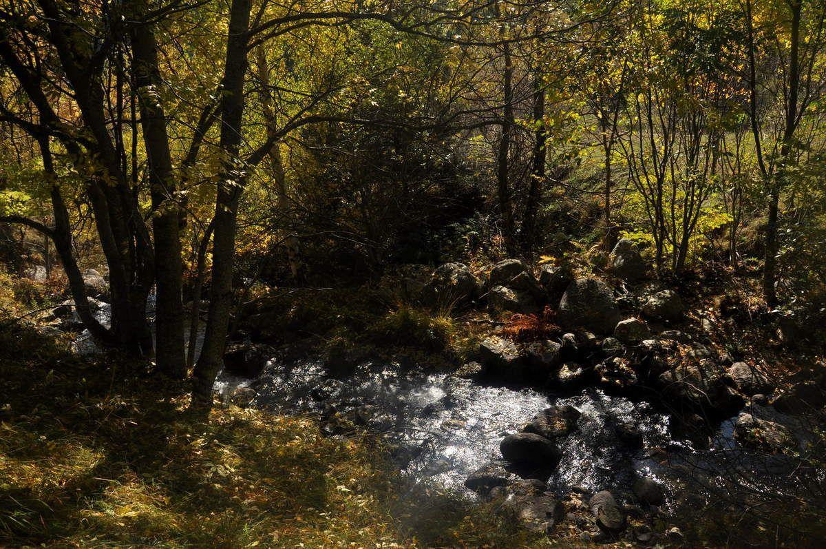 La rivière est belle.