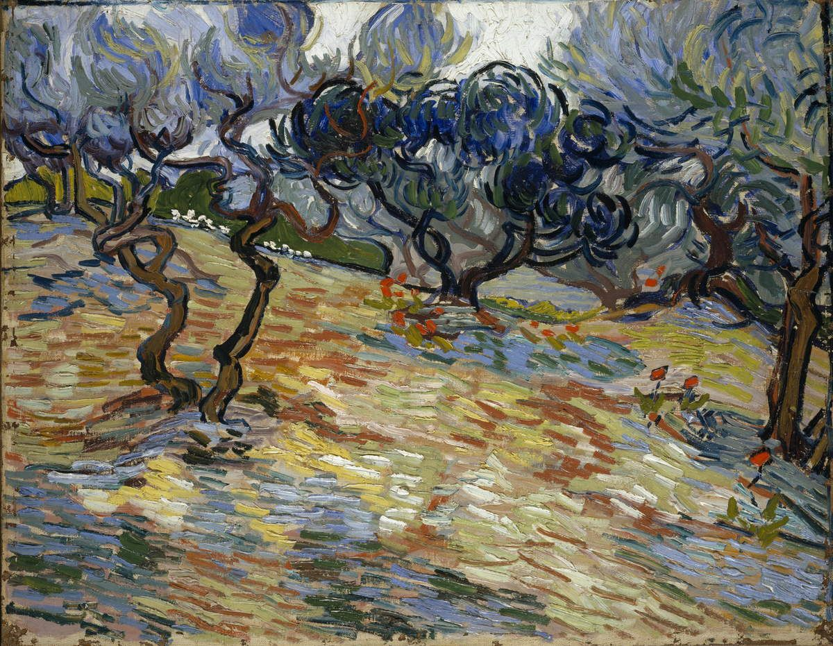 Vincent van Gogh (1853 – 1890) Olive Trees 1889 Oil paint on canvas 510 x 652 mm National Galleries of Scotland