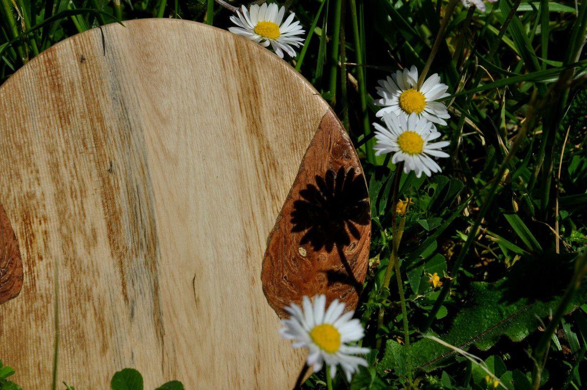 Une série avec le bois de figuier et la pomme de pin.