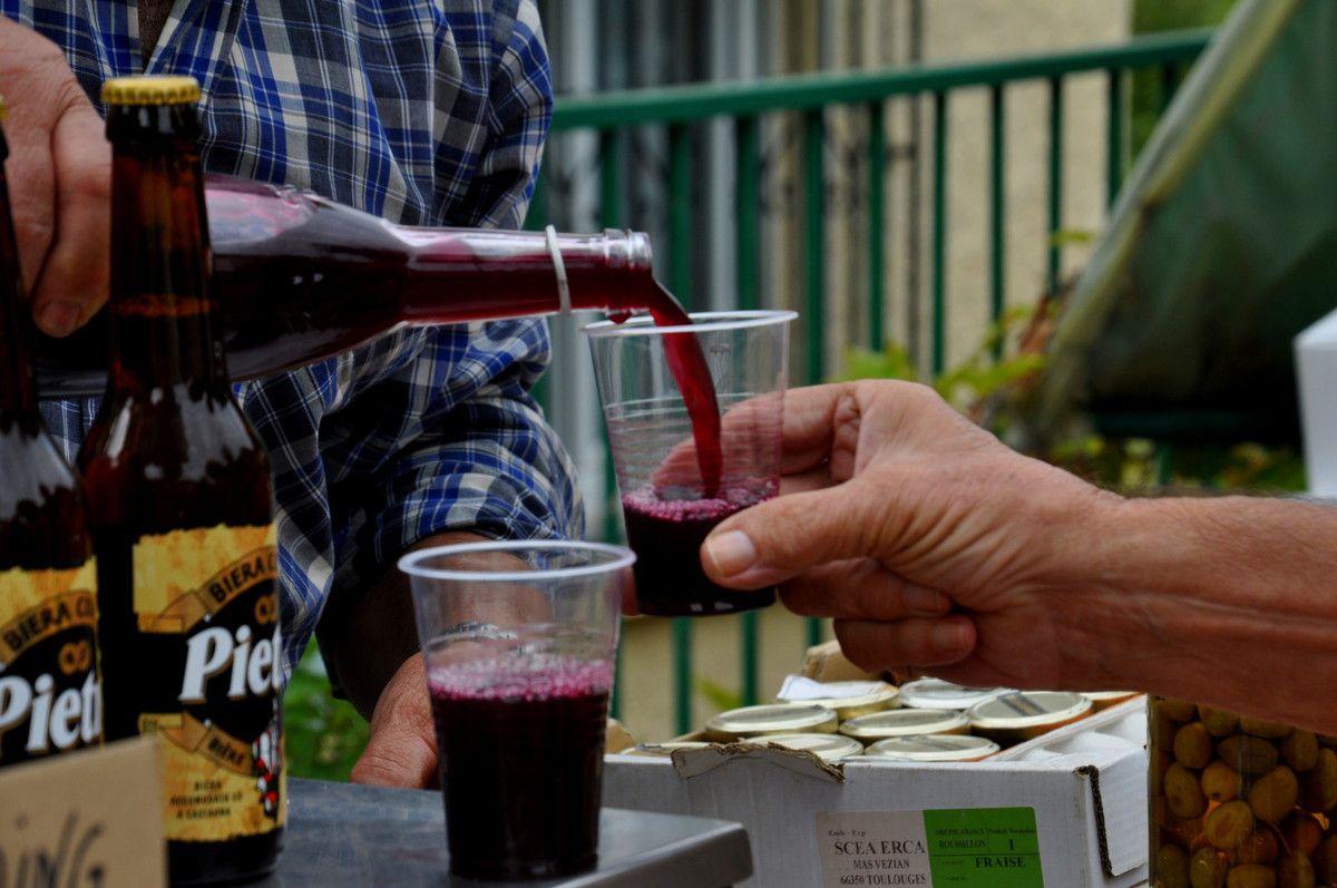 Le vin en dégustation