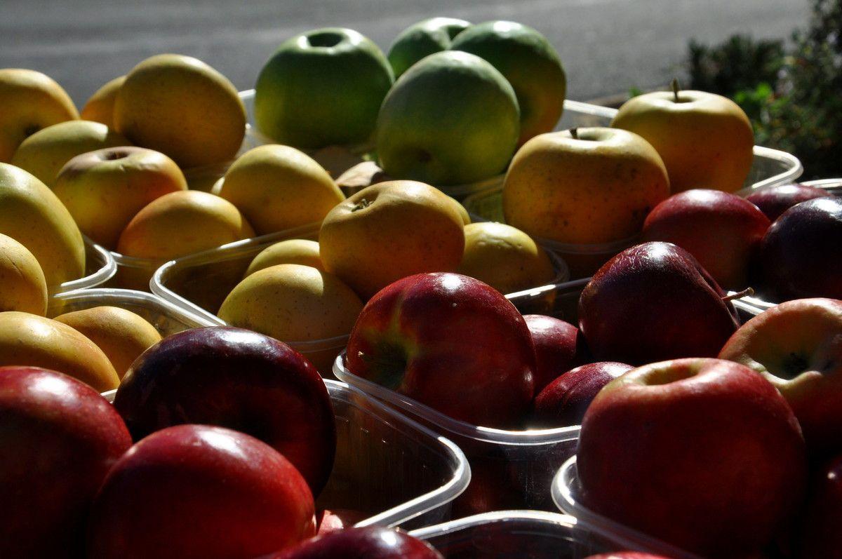 Les belles pommes de notre région