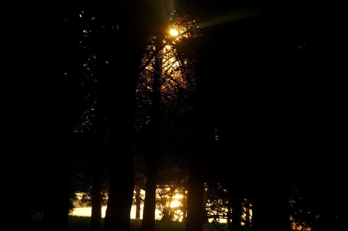 Soleil en bord de lac. C'est cadeau avec la canicule de fin juin