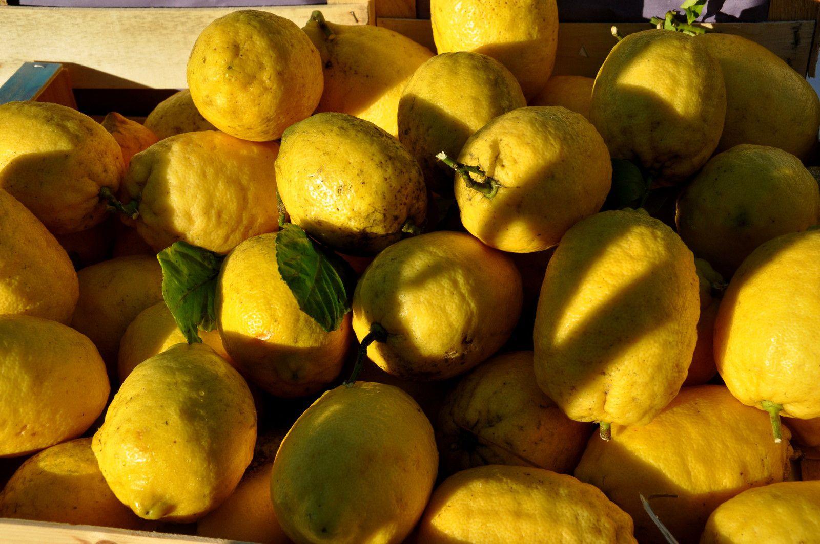 Quelques exemples présents lors des dernières éditions avec  les citrons