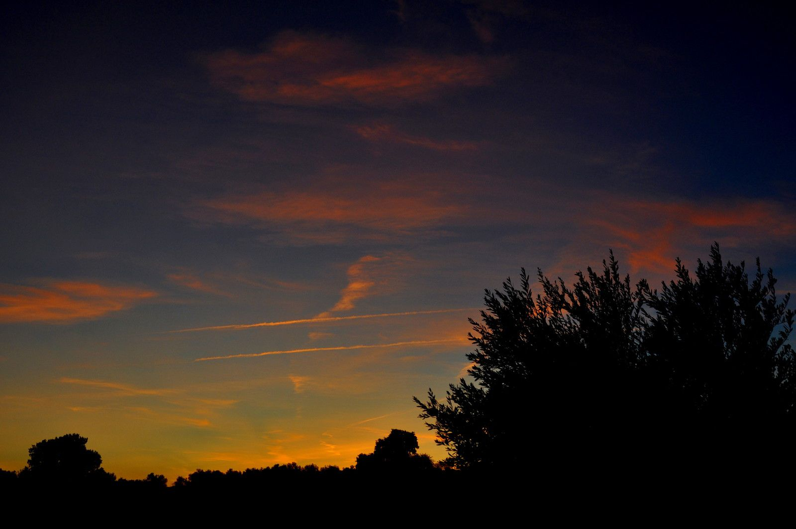 Les couleurs avec le # dans le ciel.