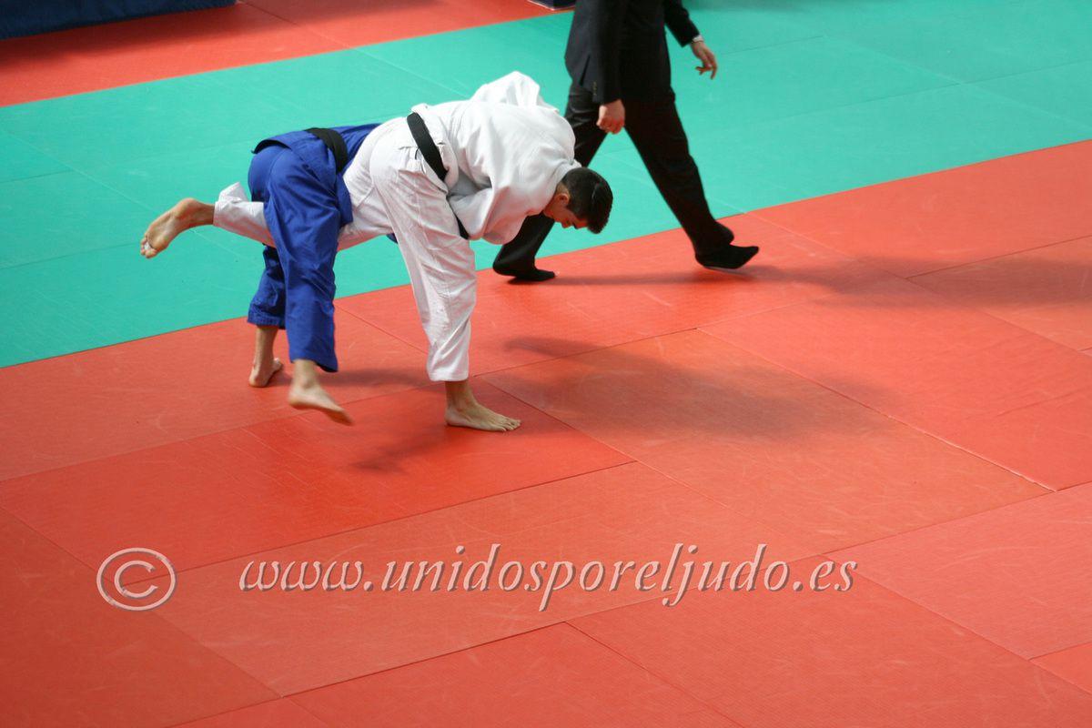 Campeonato de Madrid de Judo junior
