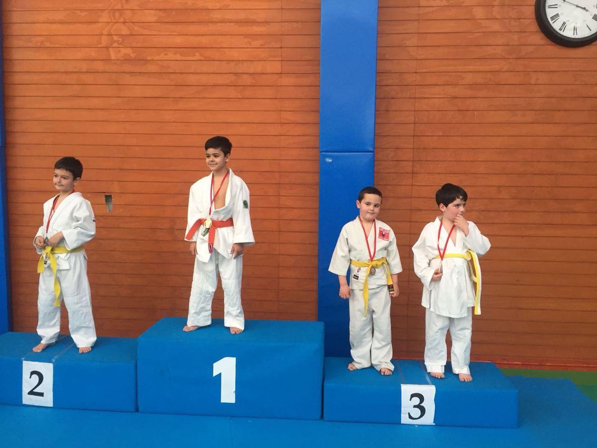 Torneo iniciación Judo mini benjamín