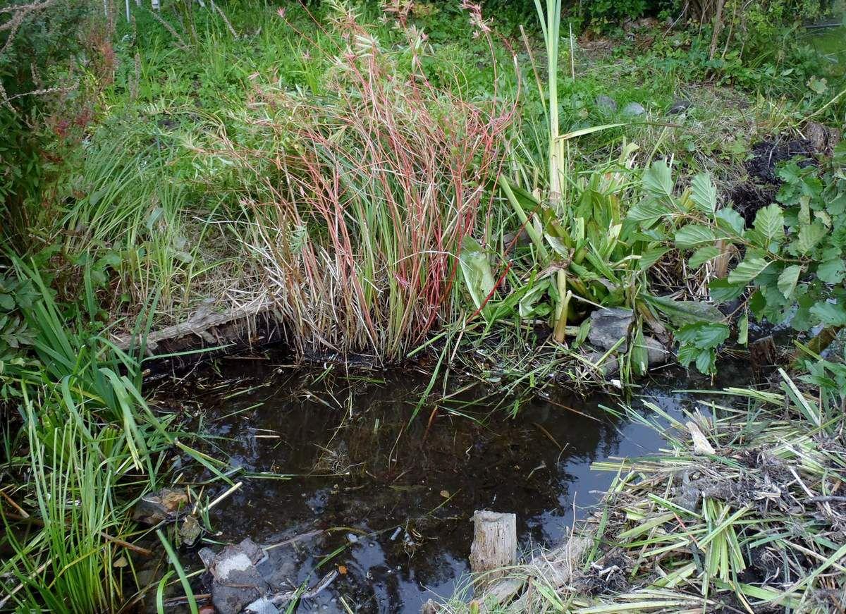 Arbeit in Sumpf und Morast