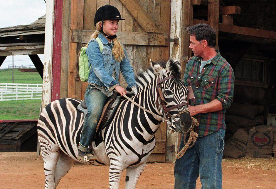 striscia una zebra alla riscossa film