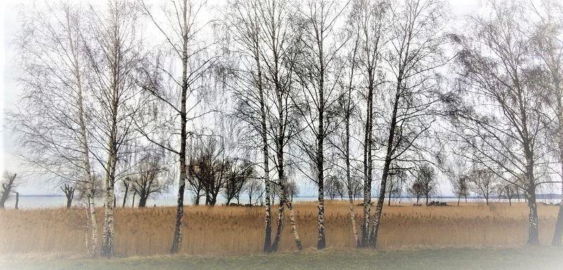 Der Bodensee in Farbe - Fotografie