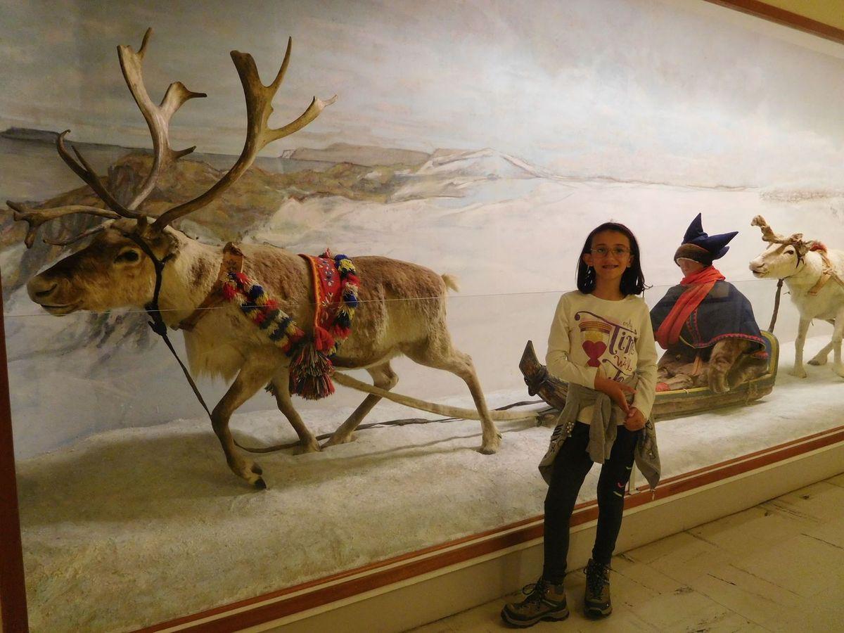 Museo universitario di Tromso (Norvegia)
