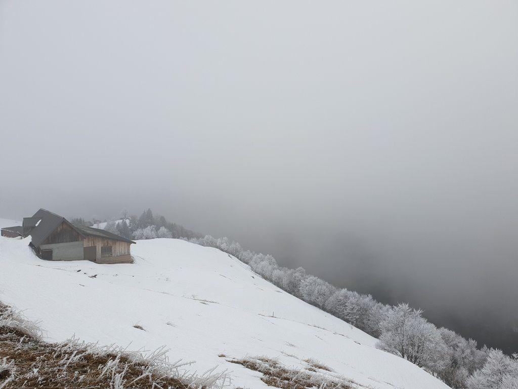 Randonnée  ADAPAR à raquettes de Précherel au Col de Chérel Bauges le 11.01.19