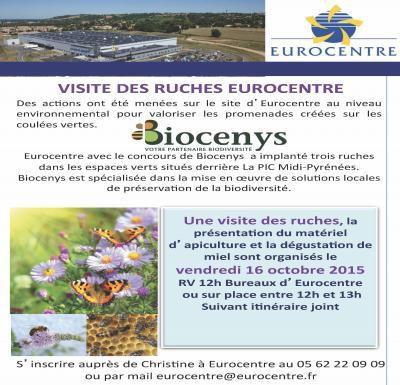 CASTELNAU D'ESTRETEFONDS : VISITE DES RUCHES EUROCENTRE