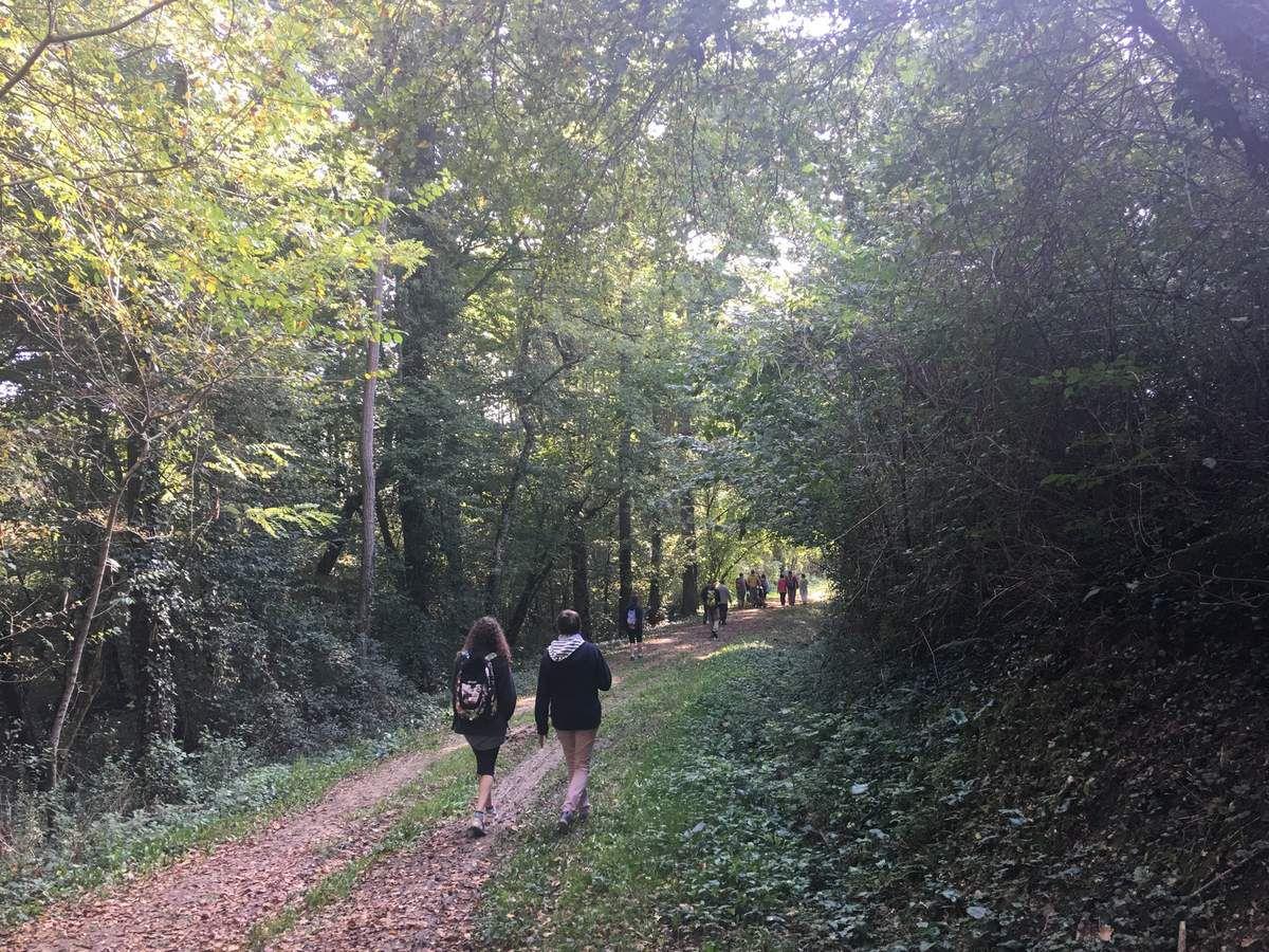 BALADE MUSICALE A BOULOC - DÉCOUVERTE DU SÉCHOIR A BRIQUES