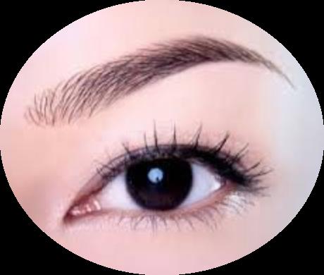 c line h maquillage permanent maquillage permanent formations d tatouage trichopigmentation. Black Bedroom Furniture Sets. Home Design Ideas