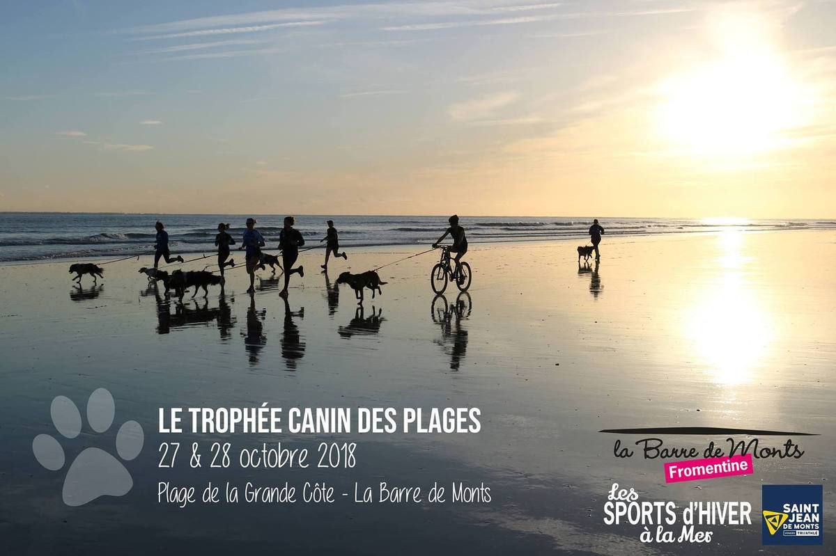 Calendrier Canicross.Le Trophee Canin Des Plages Canicross Canivtt St Jean