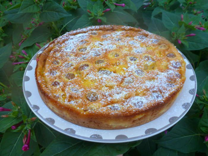 Gâteau aux Mirabelles recetet weight watchers