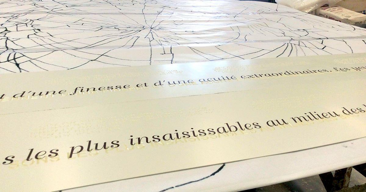 """Nous allons installer, le 27/03/, a la mairie du 10e, les 4 modules que que nous avons fabriqué pour la campagne de sensibilisation sur diffèrent handicapes .     """"CONNAISSENS """"  une commande de EH&LAB"""